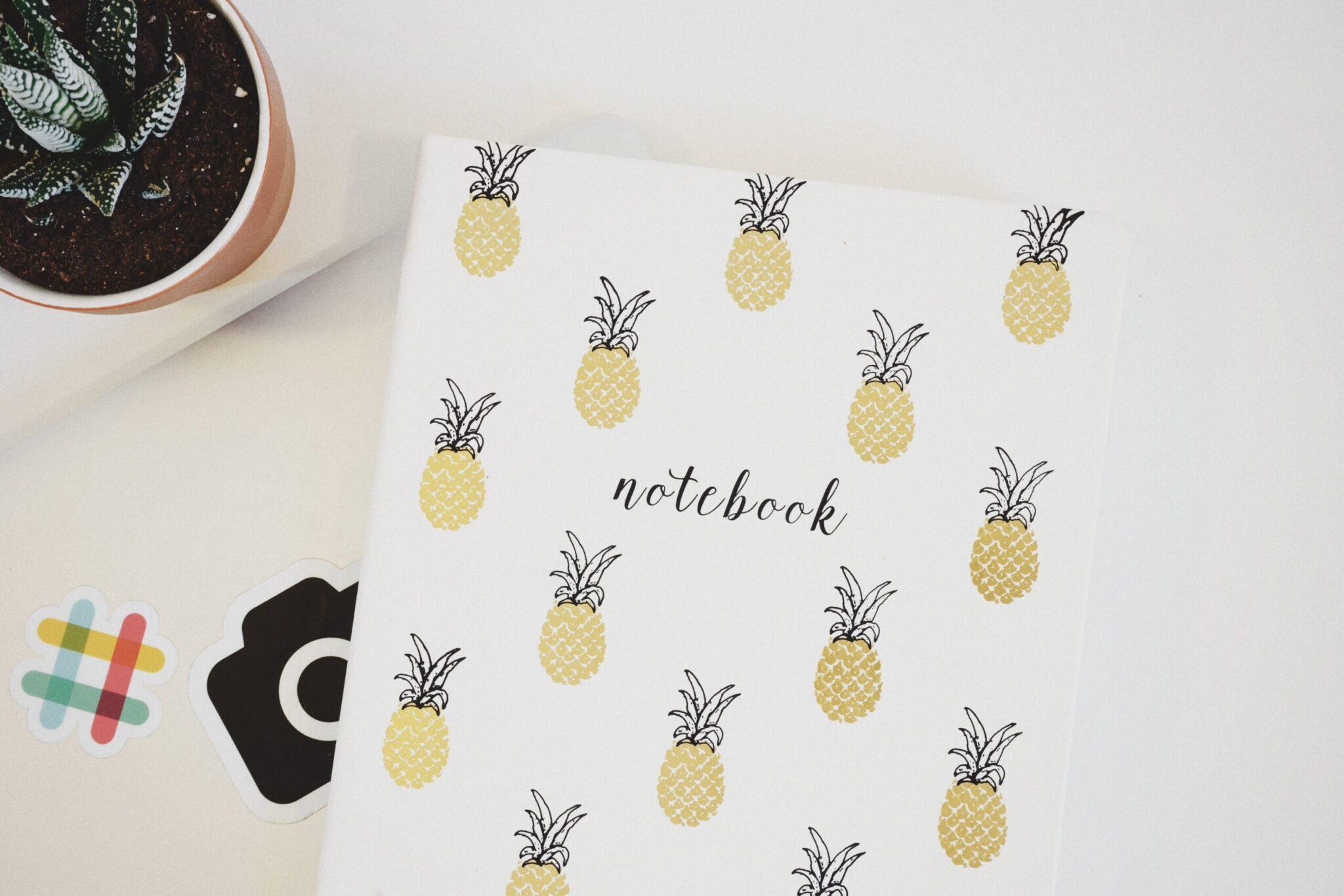 En ananas notesbog til Curly Girl Metoden bloggen